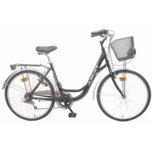 bicicleta-passeig